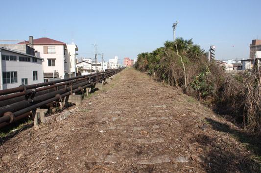 10-3-27三池浜線跡築堤整備 (10) のコピー