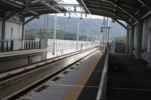 10-4-4新大牟田駅レールウォーキング (61) のコピー