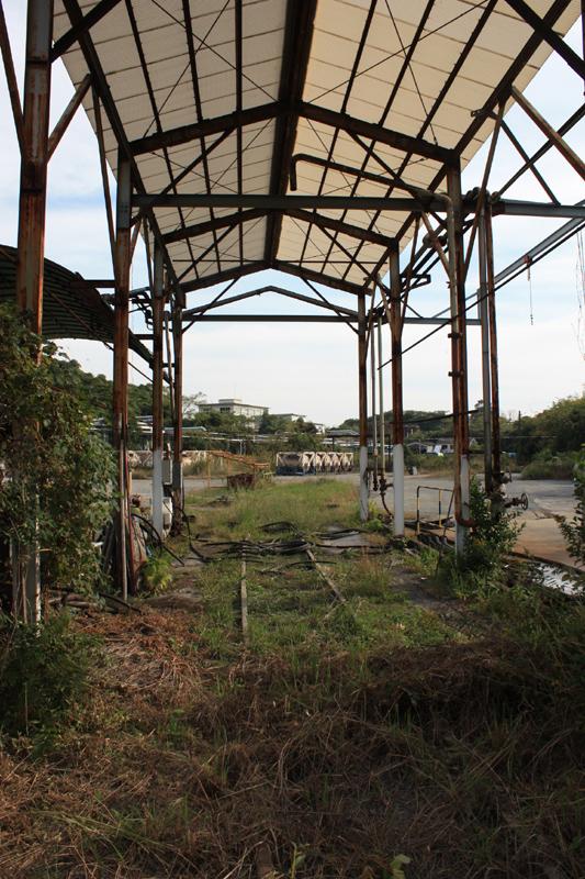 101103保存炭鉱電車公開 (110) のコピー