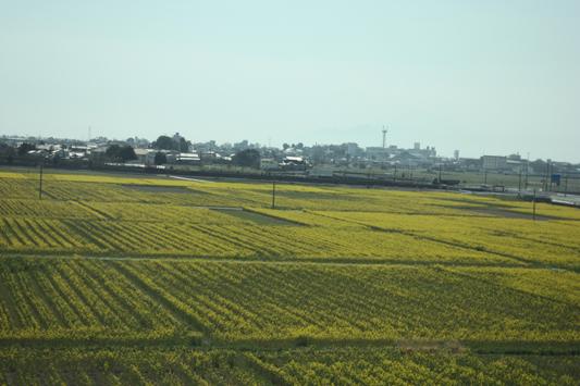 新幹線車窓 (11) のコピー