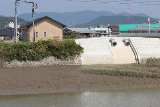松橋の川 (12)のコピー