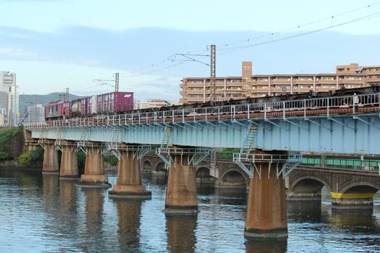 111023名島橋カモレ (13)のコピー