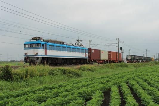 110820南瀬高1151レ (11)c