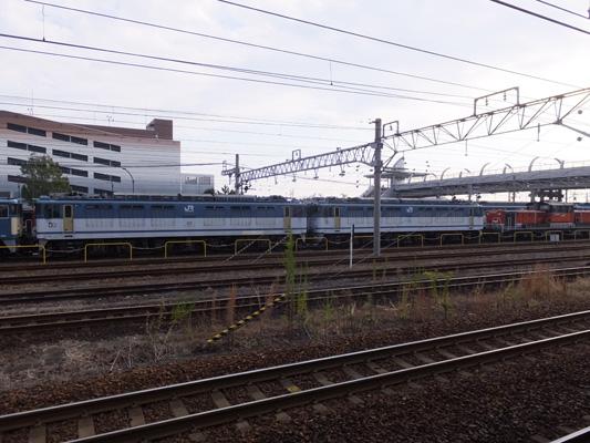 131117稲沢 (19)のコピー