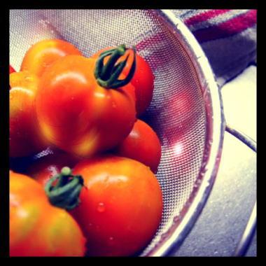tomatei.jpg