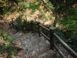 弥山の山道
