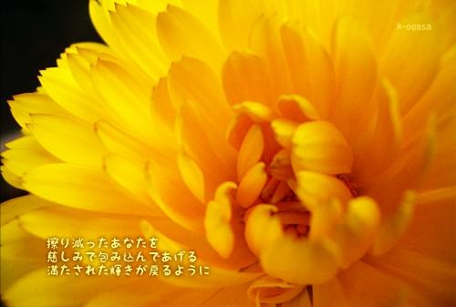 20091118 包み込む(長詩).jpg