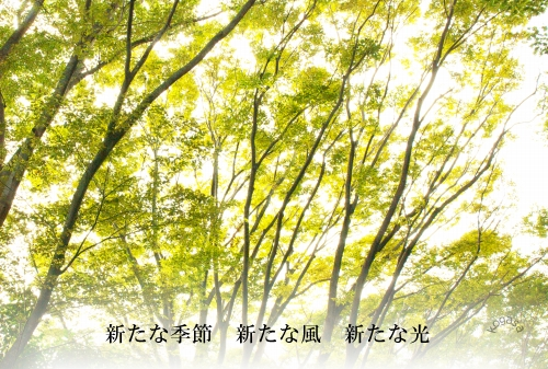 20100124 新たな季節.jpg