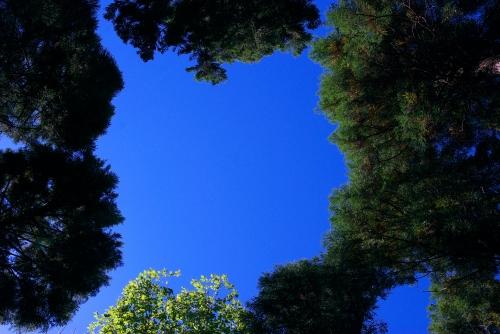 20101030 空の穴2.jpg