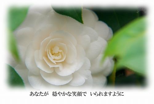 20110508 お母さん.jpg