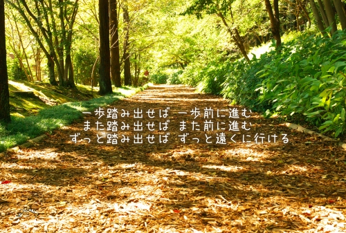 20110527 ずっと.jpg