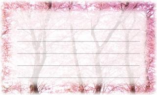 20110612 桜(記載面).jpg