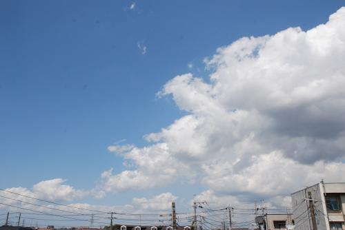20110820 人生.jpg
