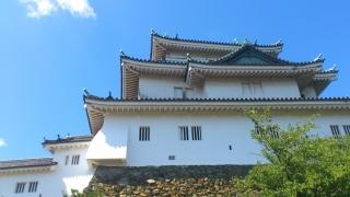 20110910 和歌山城1.jpg