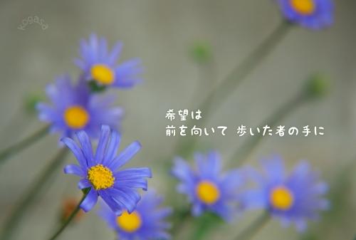 20110116 希望.jpg