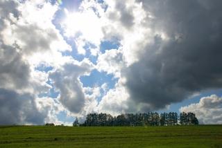20111001 マイルドセブンの丘1.jpg