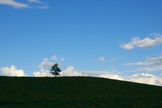 20111001 メルヘンの丘.jpg