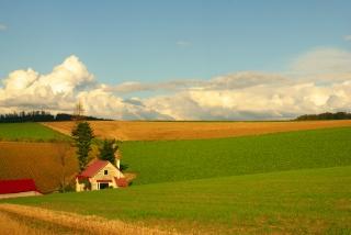 20111001 赤い屋根の家.jpg