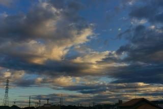 20111126 朝雲.jpg
