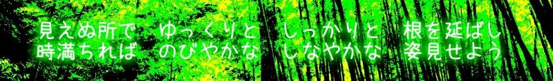 20111204 年賀状詩.jpg