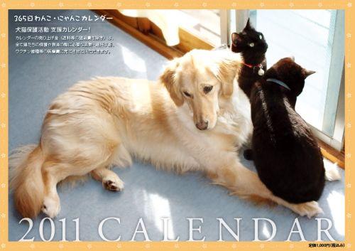 2011_wanko_nyanko_calendar_h1.jpg