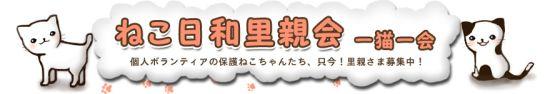 保護猫ちゃんの里親さま募集中!~ねこ日和里親会~