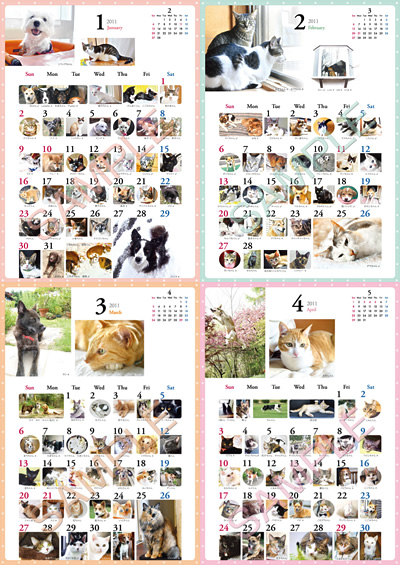 item_11_2.jpg