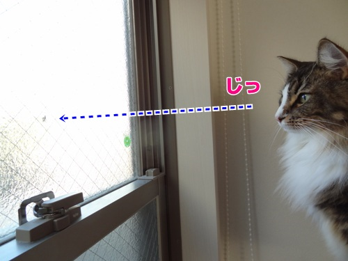 bansaku2_text.jpg