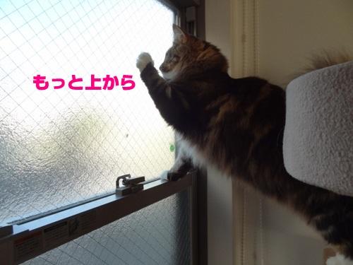 bansaku4_text.jpg