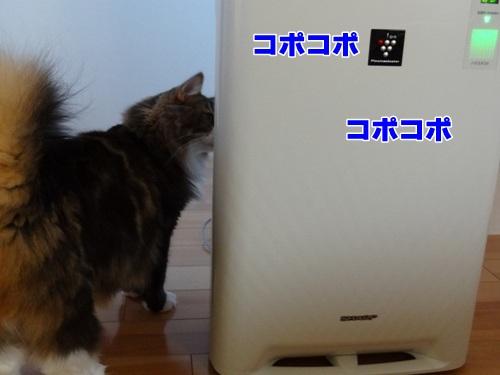 humidify2_text.jpg