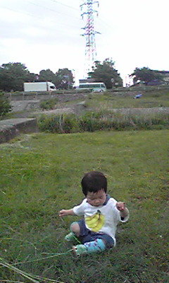 Image6980.jpg