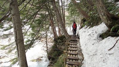 槍沢ロッジへ向けてスキーを背負って歩くホダカ。