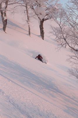 尻別岳東面を滑るホダカ。