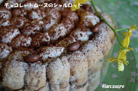チョコレートムースのシャルロット