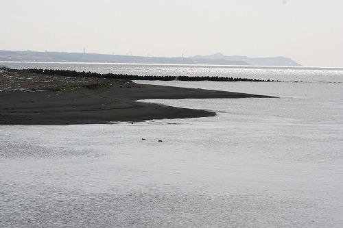 河口110312p2