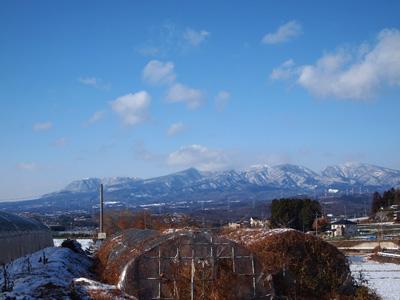 いっぱい雪降った