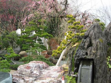 久留米植木祭り 149 - コピー