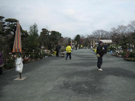 久留米植木祭り 140 - コピー