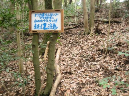 近道 009 - コピー