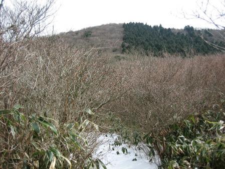 雷山、井原山 332 - コピー