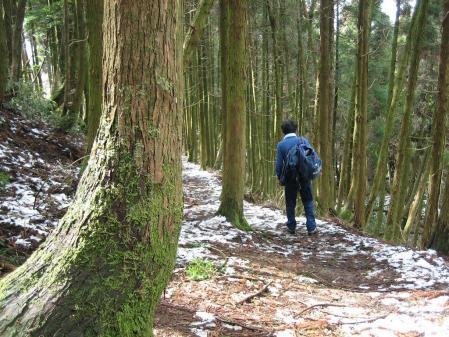 雷山、井原山 376 - コピー