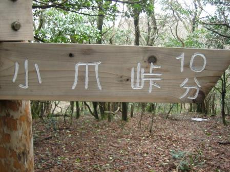 金山 藪こぎ 107 - コピー