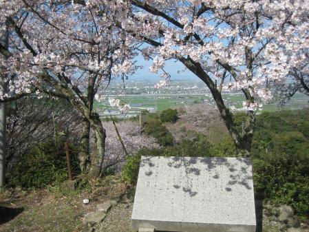 清水山の桜 032 - コピー