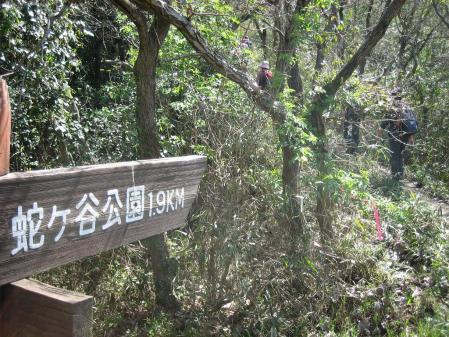 蛇が谷公園の花観 014 - コピー