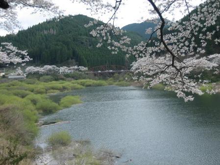 日向神の桜 039 - コピー