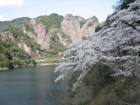 日向神の桜 152 - コピー