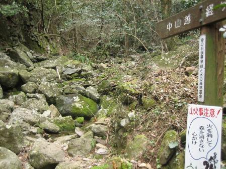 多良岳の花 そよ風さん 023 - コピー