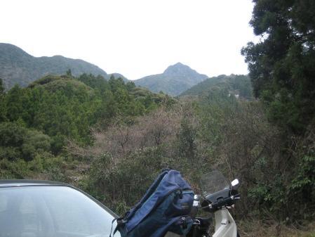 多良岳の花 そよ風さん 001 - コピー