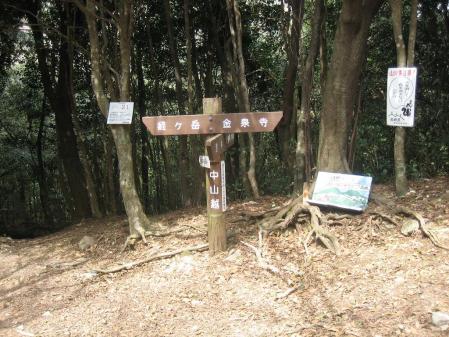 多良岳の花 そよ風さん 041 - コピー