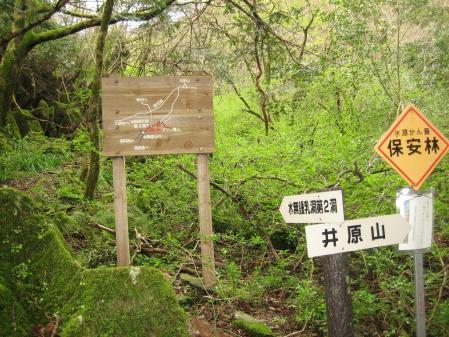 花 井原山 143 - コピー